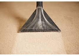 Image result for professional carpet cleaning wand images