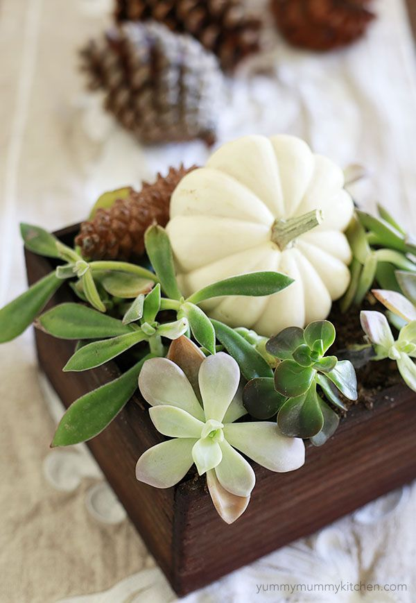 whites and greens to incorporate into your fall home decor.
