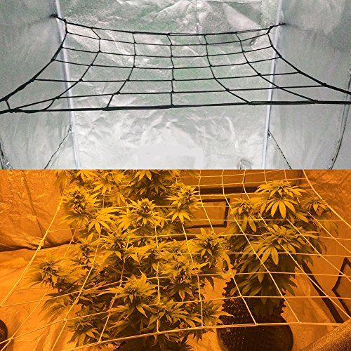 Flexible Net Trellis for Grow Tents Fits 4x4 and more size Includes 4 Steel & Mer enn 25 bra ideer om Grow tent på Pinterest | Cannabis