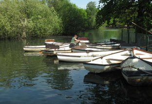 Epping Forest Row Boats