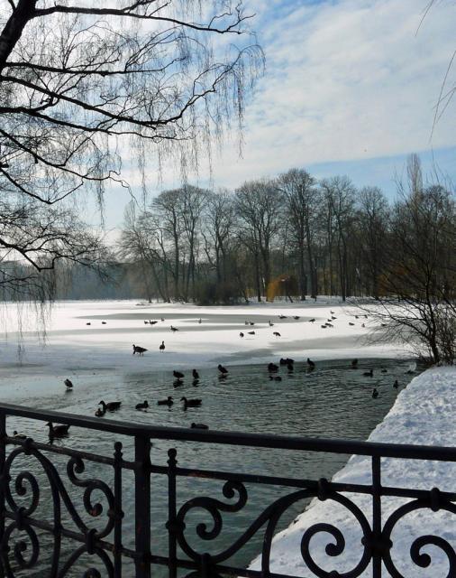 Schnee und Eis verwandeln München jedes Jahr in eine wunderschöne Winterlandschaft. Impressionen mit Motiven aus ganz München sind in dieser Bildergalerie zu sehen. Den Anfang macht eine malerische Idylle mitten in der Stadt: der Hofgarten im Winter.