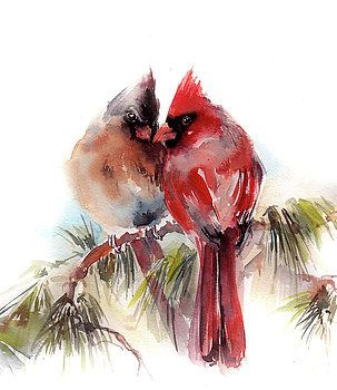 Cardinals wateroclor painting by Sophia Rodionov