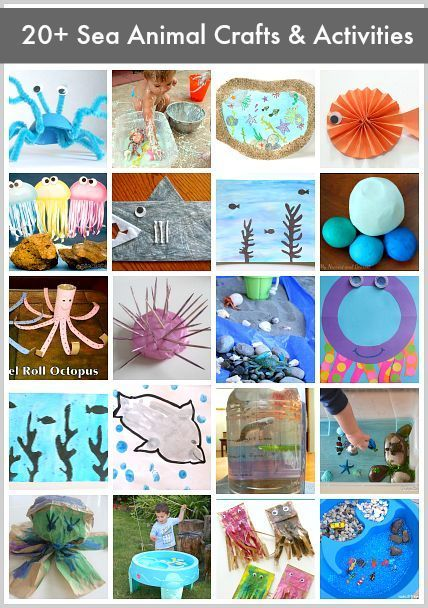 20+ Sea Animal Crafts & Activities for Kids: Ocean animal ideas including fish, crab, jellyfish, octopus, and more!