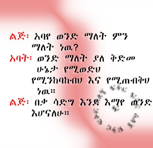 bible commentary pdf in amharic