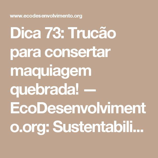 Dica 73: Trucão para consertar maquiagem quebrada! — EcoDesenvolvimento.org: Sustentabilidade, Meio Ambiente, Economia, Sociedade e Mudanças Climáticas
