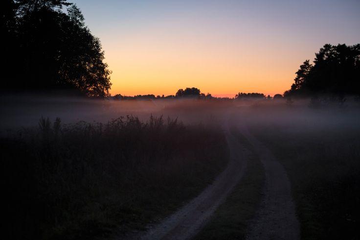 Туманная дорога | National Geographic Россия