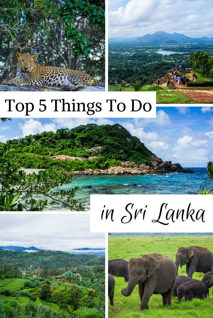 My personal Top 5 Things to do in Sri Lanka shouldn't be missed when visiting Sri Lanka as they represent what makes this country so special.