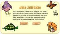 JOC INTERACTIU CLASSIFICACIÓ ANIMAL