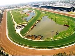 Gulfstream Park is a horse racecourse in America, that holds thoroughbred horse racing and hosts the Gulfstream Park Handicap.