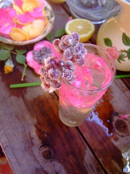 Hendrick's Gin  St. Germain Elderflower Liquor  Soda or tonic water Soda is dry, and tonic is sweet.  1 fresh lemon juiced  Ice  Fresh, unsprayed rose petals
