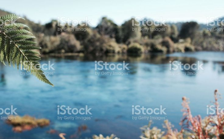 Pure Fresh Water Spring Waterscape royalty-free stock photo