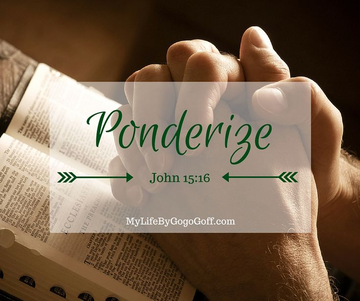 """What do you ponderize? Have you ever thought of ponderizing Preach My Gospel? By """"Ponderizing"""" Preach My Gospel you can gain a mastery of the Gospel."""