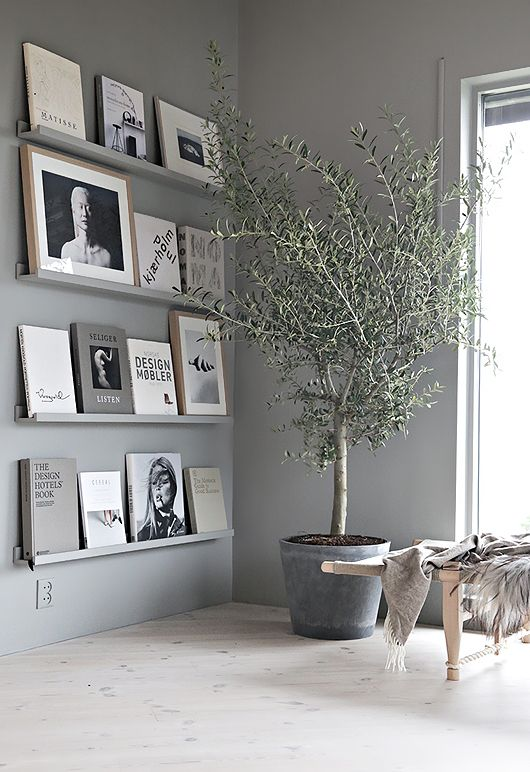 Grey wall with shelves