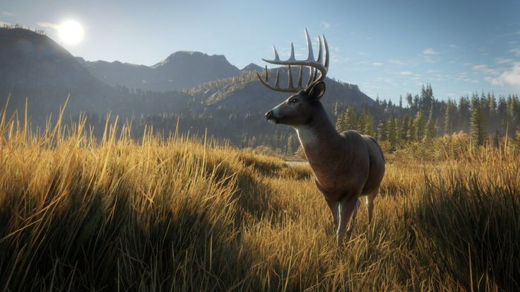 Avalanche Studios, who released explosive action games like Just Cause 3 and Mad Max released theHunter: Call of the Wild on PC in february. They received an amazing response from players, as well as thousands of requests for the title to be released on console.   #Games #News #XBOX