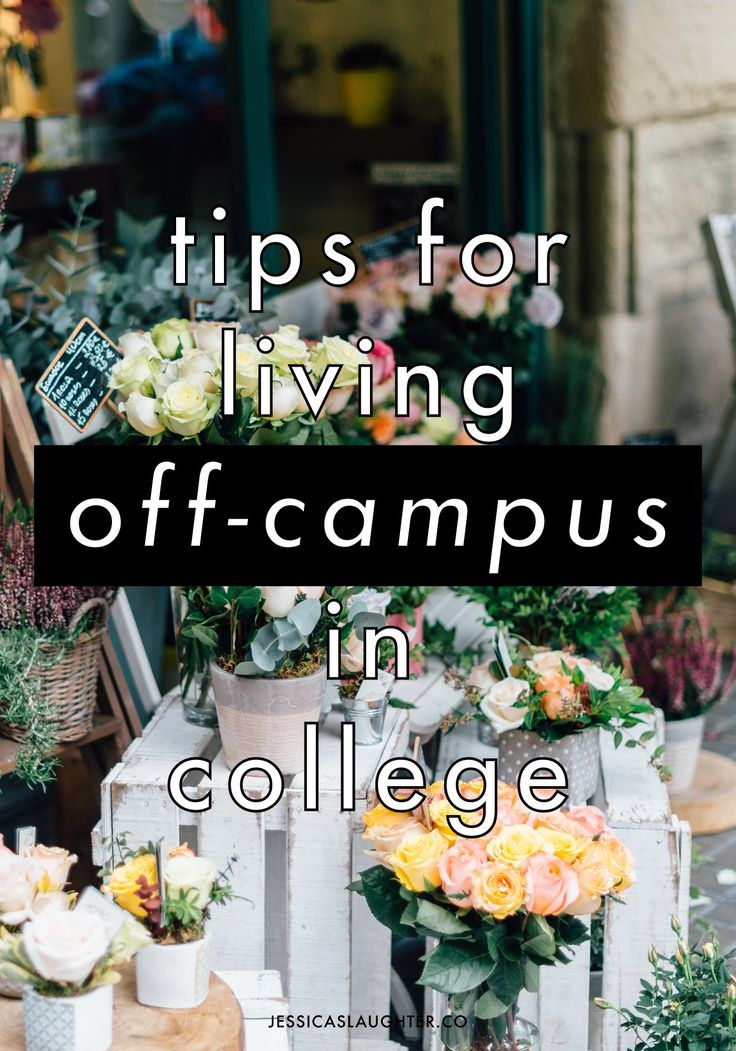 Tips for moving and living off campus in college