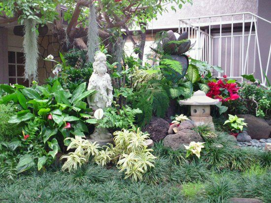 Pacific Marina Inn Airport, Honolulu Picture: An oriental garden sits just outside the office - Check out TripAdvisor members' 50,104 candid photos and videos of Pacific Marina Inn Airport