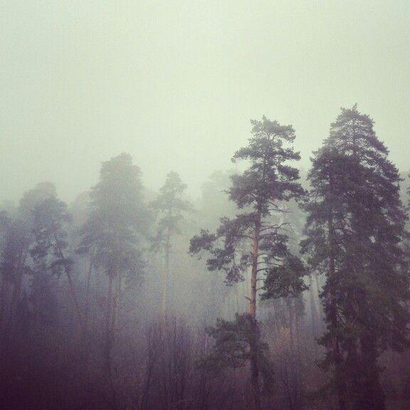 туман в Поволжье