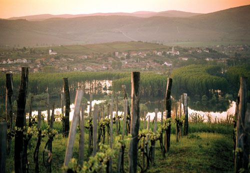 Tokaj (where you get Tokaj wine), Hungary