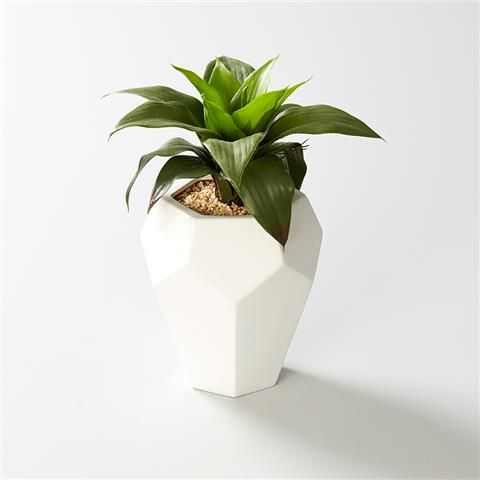 Plastic Agave Plant in Geometric Pot