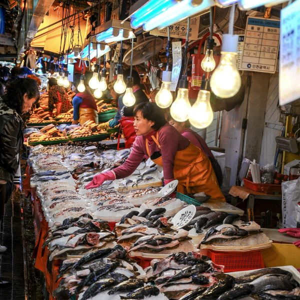 Congrats To Herbert Andrew Dutton With Seafood Vendor So Rae Fish Market Korea Photo Of The Week Photography Fis Fish Monger Painting Photos Of The Week