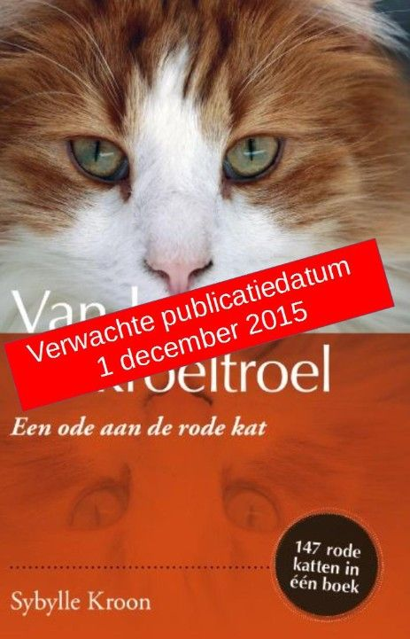 Website over het boek Rode Katers van auteur Sybylle Kroon. - Rode Katers