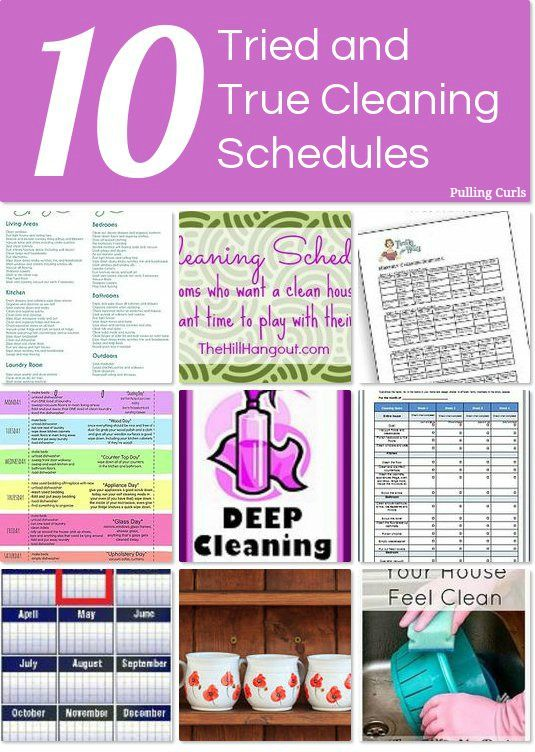 Cleaning Schedules at HomeTalk