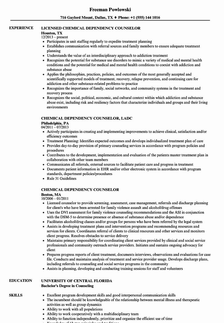20 entry level counselor resume with images human
