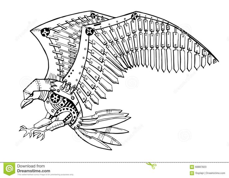 Eagle Tattoo Line Drawing : Best ideas about eagle tattoos on pinterest
