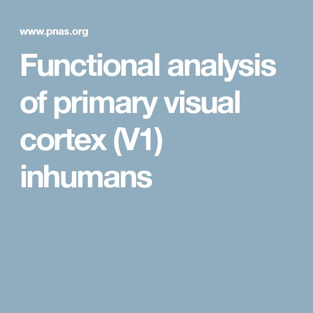 Functional analysis of primary visual cortex (V1) in humans