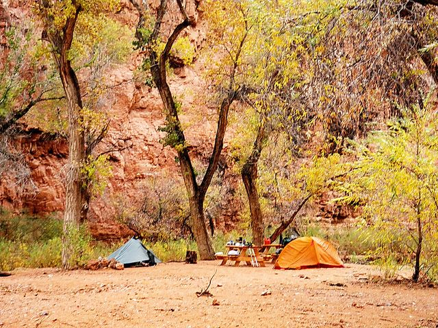 Faced with the end of summer, you might be packing away your camping gear for the season. But if you can brave cooler temperatures and a touch of rain, fall camping will reward you handsomely. For one thing, you'll have