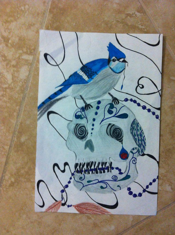Blue jay on sugar skull drawing I did