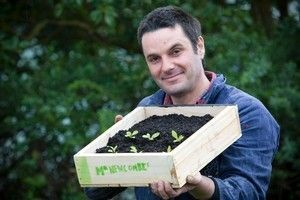 DIY seed-raising tray instructions.