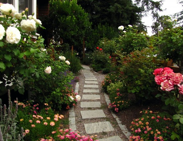 rose garden ideas garden design beauteous rose garden business plan with backyard rose