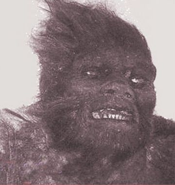 Is this the face of a dead Russian Bigfoot?