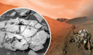 LIFE ON MARS: NASA rover finds 'unique fossils' on Red Planet | Science | News – WORLD CENTER