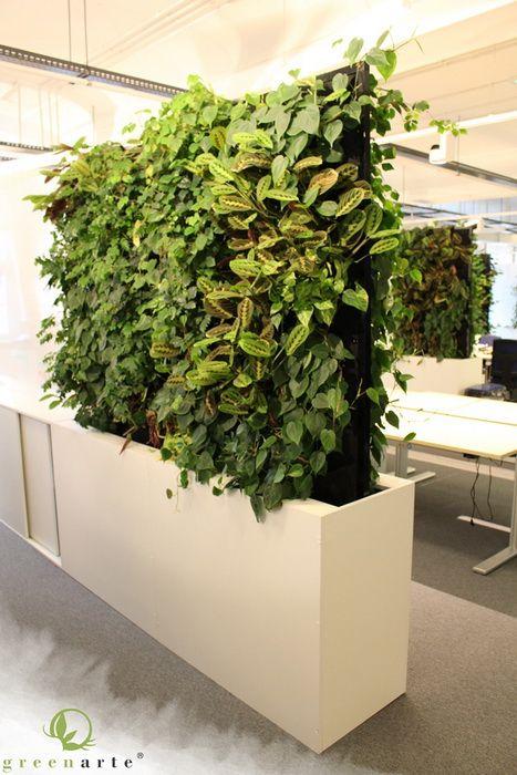 Modułowe roślinne ściany w aranżacji biura - luty 2014