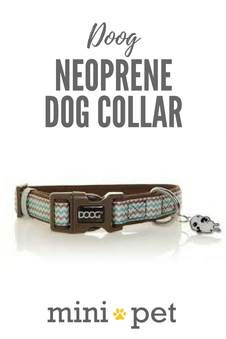 DOOG dog collars are perfect for dogs on the go! Made from comfy, quick dry Neoprene, these super stylish collars will make your pooch stand out from the pack! As a bonus, each collar comes with a silver doggie ID tag which you can engrave with your dog's details.  The Benji collar features an understated Chevron stripe in soft teal and brown. Matching dog leads are also available.