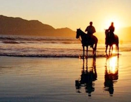 horseback riding on the beach <3