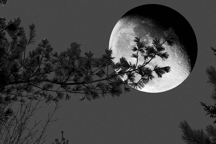 full moon 300 dpi - Google Search