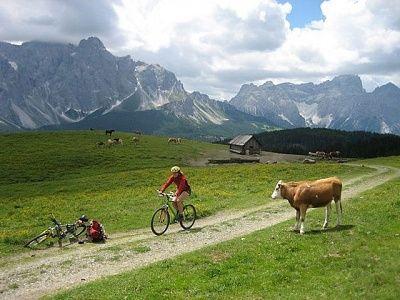Fanes-Sennes plateau Mountainbike trektocht, 4 dagen.  Mountainbiken in de Dolomieten; het mooiste kalkmassief van de Alpen. Je maakt pittige MTB-tochten over onverharde wegen en paden in het Parco Naturale Fanes-Sennes, met zijn rijkdom aan beschermde planten en dieren. Een ruige trektocht, maar met het comfort van bagagevervoer.    Lees meer: http://bedandtodo.nl/activiteit/19/fanes-sennes-plateau-mountainbike-trektocht