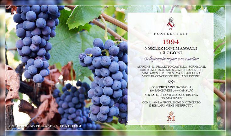 La sfida di Castello di Fonterutoli porta a rinunce volte ad arricchire la qualità del progetto. @marchesimazzei #fonterutoli #marchesimazzei #wine #tuscany