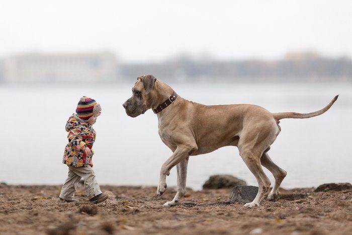 Τα μικρά παιδιά και οι γιγαντόσωμοι φίλοι τους  thetoc.gr