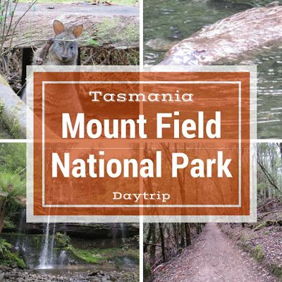 Day Trip to Mount Field National Park Near Hobart Tasmania