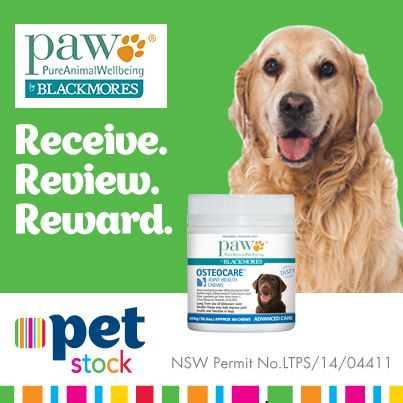 Do you have an old Buddy suffering from joint pain or inflamation? Read the reviews on the PAW Osteocare Chews to see if they could help your Buddy!