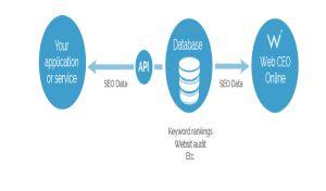 api tool of WebCeo