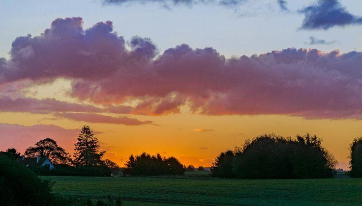Orange sunrise on a walk with the dog