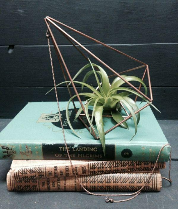 Moderne Pflanzgefäße für Luftpflanzen buch geometrisch