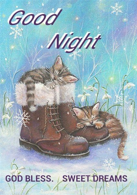 ☆☆Good Night sister and all.Have a restful sleep. GOD BLESS. xxx  ☆☆