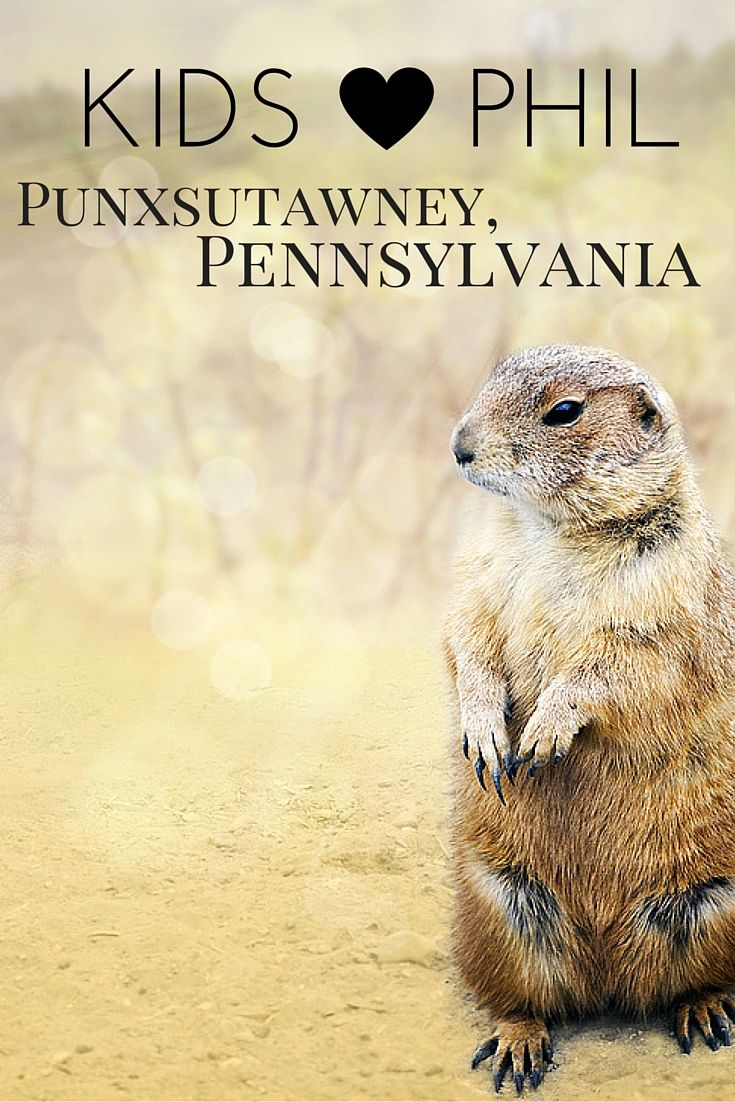 "All of the US looks to Punxsutawney Phil to forecast their spring weather on February 2nd every year. Your family doesn't have to wait until winter to visit central Pennsylvania, learn about weather and forecasting, and say ""hi"" to the famous groundhog. Read all about visiting Punxsutawney and the surrounding area with kids at Trekaroo."