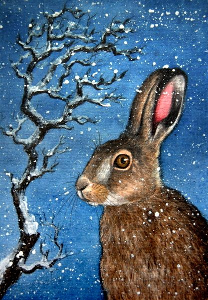 874 best bunnies images on Pinterest